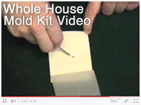 whole house mold kits video