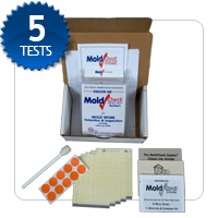 apartment or condo mold testing kit