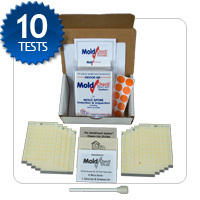 whole house air and surface mold testing kit