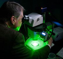 microscope with green light